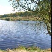 Трехмесячник по охране водных живых ресурсов в нерестовый период в Днепропетровской области