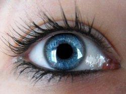 Японцы вырастили человеческий глаз в лабораторных условиях.