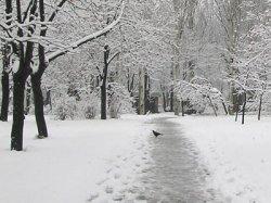 На теплую зиму днепропетровцам лучше не рассчитывать